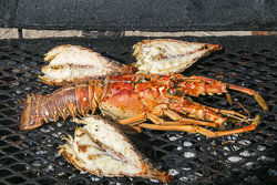 Grilled Lobster Tails - A Belizean Foodie Favorite